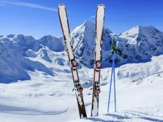 almos a million people in holland go on winter sport vacation