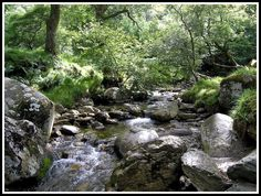 Mountain Stream · Glendalough · Co. Wicklow © Komposti