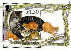 Postage Stamps - Isle of Man 1996 Manx Cats M.S. UM