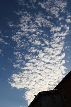 2012-10-20: summer sky
