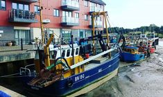 Lorna Peel (@lornapeelauthor) • Instagram photos and videos Boat, Photo And Video, Videos, Photos, Instagram, Dinghy, Pictures, Boating, Boats