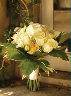 Classic, hand-tied bouquet of ivory Royal Victorian roses, mini calla lilies, tea roses and scabiosa pods surrounded by a collar of variegated aralia leaves at Dunn and Sonnier Flowers. Wedding Inspiration, Design Inspiration, Wedding Ideas, Scabiosa Pods, Love Conquers All, Hand Tied Bouquet, Calla Lilies, Tea Roses, Bridal Bouquets