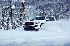 2017 Toyota Tacoma TRD @ Ken Shaw Toyota in Toronto Ontario Toyota Tacoma Trd Pro, Toyota 4runner, New Tacoma, Goodyear Wrangler, Toyota Dealership, Toyota Trucks, Ford Trucks, All Terrain Tyres, First Drive