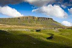 Pen-y-ghent. Part of the Yorkshire 3 Peaks