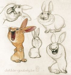 rabbit on Behance
