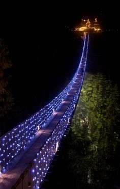 Capilano Suspension Bridge, Vancouver - My hometown...this must be xmas cuz I don't recall there ever being lights...