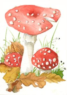 Aceo mushroom painting watercolor original painting by TheRedBerry, €15.00