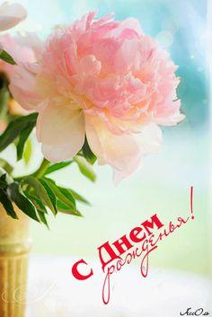 Happy Birthday Cards, Birthday Wishes, Birthday Parties, Good Morning Cards, Happy Family, Peonies, Beautiful Flowers, Congratulations, Birthdays