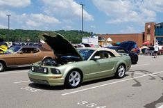 Trish & Steve Zipoff's 2006 Ford Mustang GT Droptop 'Limey' 2006 Mustang Gt, Ford Mustangs, Dream Cars, Convertible, Infinity Dress