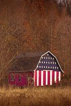 An Americana barn American Barn, American Flag, American Pride, American Spirit, American Country, I Love America, God Bless America, Cabana, Country Barns