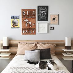 Ikea Mandal bed frame, modeled by Shiloh