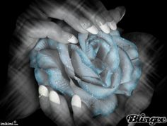 Rose in hand Rose In Hand, Hand Pictures, Hand Art, Photo Editor, Color, Template, Flowers, Places, Colour