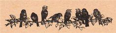 Мои заскрапушки: Картинки для скачивания. Птицы часть 1.