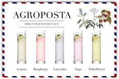 Agroposta cordials are offered in a small secure sachet with 40 ml of concentrated syrup. Simply add the sirup to sparkling or still water and dilute to taste. Serve with ice and lemon.