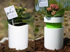 plant pots, that indicate when plants need water.