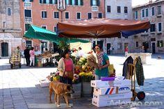 Flower stall in Campo Santa Margherita