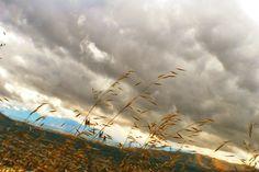 Aire libre, nubes y naturaleza  Cerro San Cristobal, Santiago de Chile
