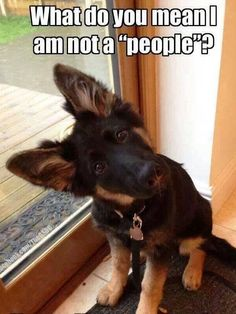 What do you mean I am not a 'people'?