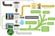 Diagram that outlines the MicroAlgae Water Treatment Process