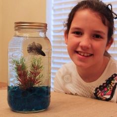 """Yet another example of a terrible betta """"home"""". Bettas do not """"thrive"""" in small spaces, they simply do their best to survive"""