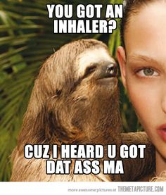Seductive Sloth .... HAHAHAH. I love the sloths face