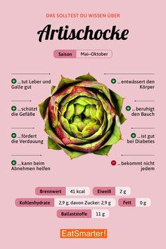 Das solltest du über Artischocken wissen | eatsmarter.de #artischocke #infografik #ernährung