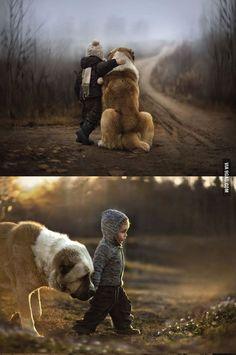 A boys best friend