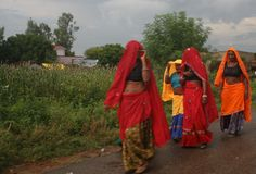 I'm very drawn to the warm, bright colors of India and the designs of saris