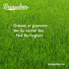Hvor vanner du gresset ditt? http://www.bruspulver.no/2013/10/17/hvor-vanner-du-gresset-ditt/