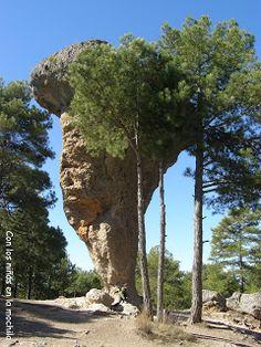 ¿Un lugar mágico en #Cuenca para disfrutar con los peques? Sin duda, la #CiudadEncantada (archivo) #archivo http://blgs.co/p89iK7