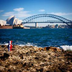 DéDé loves Sydney..!  #dédé #dede #whereisdédé #sydney #australia #oz #bondy #bondybeach #manly #manlybeach #newsouthwales #nsw #operahouse #sydneyharbour #sydneyharbourbridge #jornutzon #lookingfordédé #maisouestdédé #dédéisalegend #heisalegend #heisarockstar #dédéisarockstar copyright @alfydu15 by whereisdede http://ift.tt/1NRMbNv