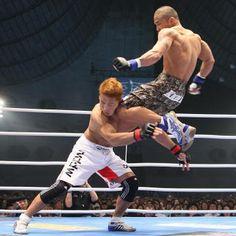 Kid Yamamoto flying knee