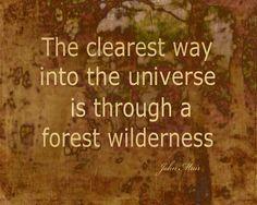 Muir Quote Nature Art Photograph #quote #Muir #Muirquotes #natureart #wallart