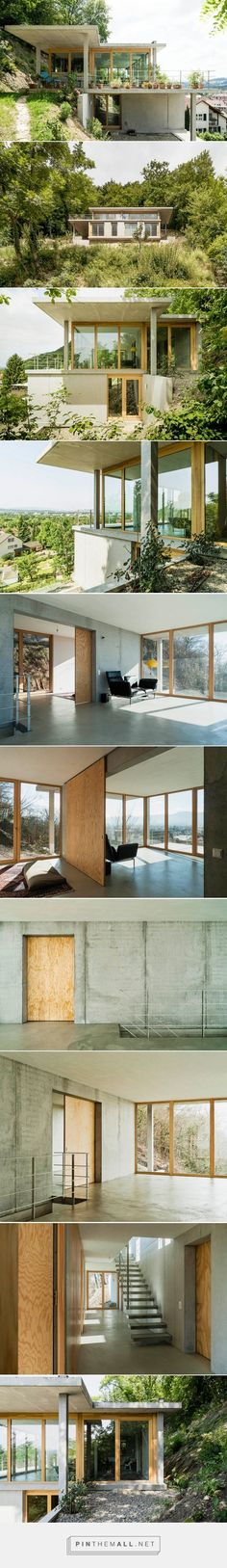 gian salis builds a house on a slope in southern germany - created via http://pinthemall.net