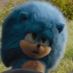 Sonic The Hedgehog, Hedgehog Movie, Hedgehog Art, Cute Hedgehog, Marvel Drawings, Disney Drawings, Sonic Videos, Sonic The Movie, Pokemon Realistic