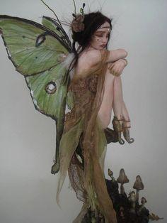 COMMISSION order -SHADOWSCULPT OOAK moth fairy fantasy lifelike art doll custom made polymer clay
