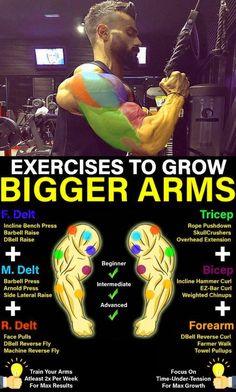 Gym Workout Chart, Band Workout, Gym Workout Tips, Biceps Workout, Workout Plans, Workout Routines, Street Workout, Boxing Workout, Workout Challenge