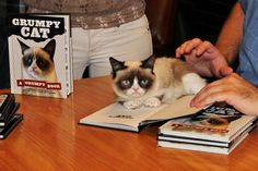 Yes, Tardar Sauce 'pawtographed' copies of her book.