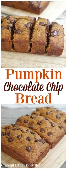 Try this easy and delicious Pumpkin Chocolate Chip bread for a fun fall breakfast or dessert! Try this easy and delicious Pumpkin Chocolate Chip bread for a fun fall breakfast or dessert! Dessert Party, Oreo Dessert, Low Carb Dessert, Pumpkin Dessert, Quick Dessert, Mini Desserts, Delicious Desserts, Dessert Recipes, Yummy Food