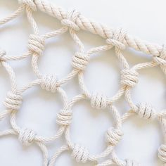 You Have to See This Artist's Massive Knot Collection | Martha Stewart