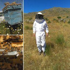 Ven y descubre el fascinante mundo de las abejas en un entorno natural en www.yuniqtrip.com #regalaexperiencias #queregalar #regala #regalar #abejas #miel #bee #honey #visitspain #turismo #turismospain #compartir #naturaleza_spain #yuniqtrip #experiencias #ocio #viajando #turismoespaña #apicultura #colmenar #gastronomia #tradicion #cultura