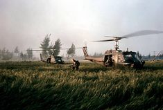 The American helicopters that brought Company C soldiers to My Lai for the assault 2400 × 1623