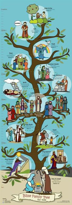 Bible Family Tree 14 x 39 Poster for Kids features some of the folks in the Old Testament who are in the Line of Jesus - from Adam and Eve, to David, and finally to Mary and Joseph. Thirteen family members are illustrated. Bible Family Tree, Family Tree For Kids, Trees For Kids, Family Tree Kids, Sunday School Activities, Sunday School Lessons, Sunday School Crafts, Bible Activities For Kids, Craft Activities