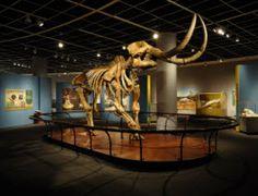 The State Museum of Pennsylvania   Hershey/Harrisburg   Pennsylvania