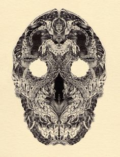 Illustrated Skulls by Meyoko