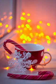 christmas aesthetic weihnachtsbilder we - Wallpaper Natal, Xmas Wallpaper, Cute Christmas Wallpaper, Iphone Wallpaper, Santa Claus Wallpaper, Wallpaper Winter, Wallpaper Backgrounds, Christmas Treats To Make, Christmas Cup