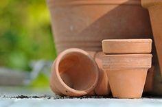 10L TERRACOTTA IMPRÄGNIERUNG  Hersteller: WO-WE (Wolfgruben Werke)    Die Terracotta Imprägnierung sorgt für einen effektiven Langzeitschutz und pflegt zugleich Ihre Terracotta, Ton- und Cotto Oberflächen im Garten, auf Terrasse und Balkon. Die Wasser- und Schmutzabweisende Imprägnierung von saugfähigen Terracotta- und Tonountergründen im Innen- und Außenbereich verhindert die Ablagerung von Schmutz, die natürliche Schönheit bleibt erhalten.    Sie schüzt vor Salzausblühungen, Wasserflecken…