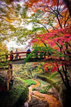 Beautiful Japanese garden landscape Jinja Falls, Yamanashi, Japan Beautiful Japanese garden landscape - Bridge of the Kappa, Japan We Are The World, Wonders Of The World, Places To Travel, Places To See, Beautiful World, Beautiful Places, Beautiful Pictures, Japanese Garden Landscape, Japanese Gardens