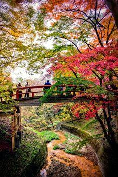 Bridge of the Kazika #japan #gunma #ikaho