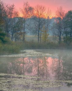 ***Misty Dawn [location and photographer unknown]